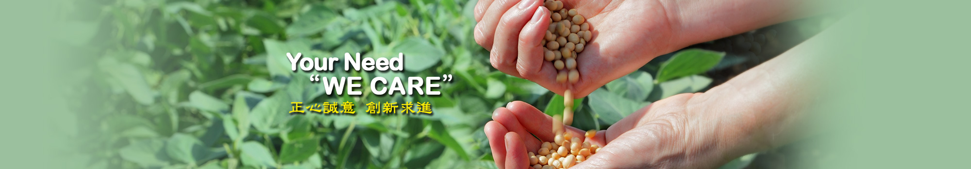 01-手捧黃豆
